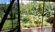 1 1 aloha nui patio and garden